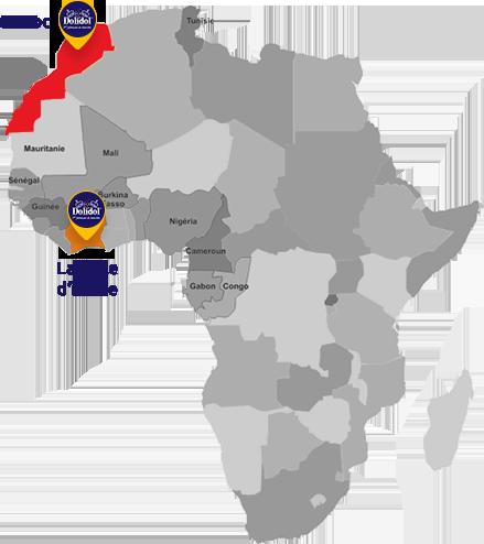 Présence en Afrique